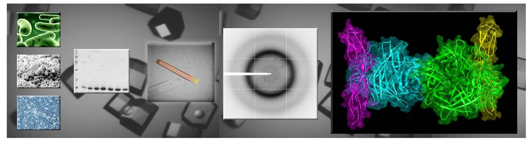 X ray diffraction ebook - downloadbestthingsclub