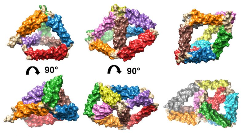 Building Small Self Assembling Protein Cages