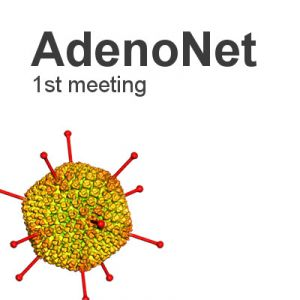 AdenoNet, first meeting