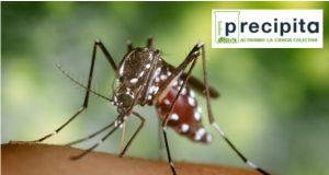 Crowdfunding project to study drugs against tropical viruses